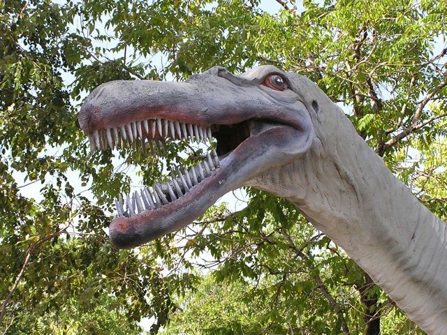 Siamasaurus, measuring 6 meters in length, has been found in NE Thalland